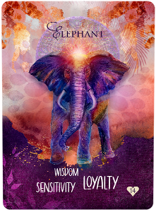 Multidimensional Oracle Card Elephant